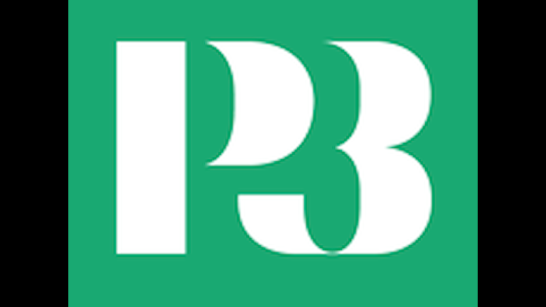 P3 logotyp