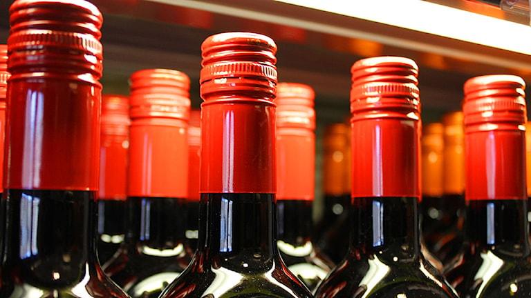 Ett stor beslag av alkohol har beslagtagits i en klubblokal i centrala Östersund.