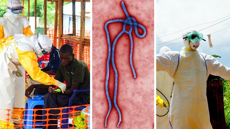 Personer som vårdar ebolasjuka