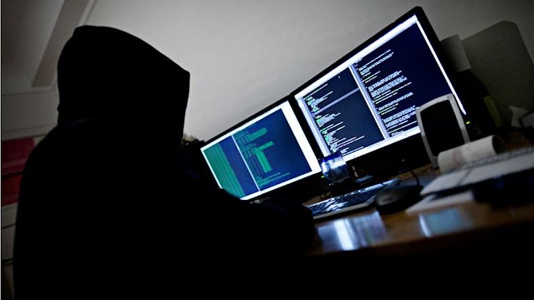 datahacker