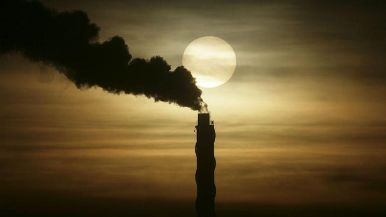 miljöförstöring