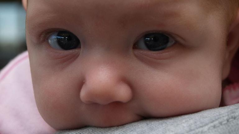 Namn ger förutfattade meningar om vem en person är. Foto: baby bentrup/christina rutz (flickr.com)/CC BY 2.0