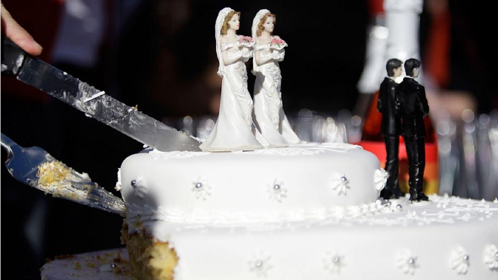 gay tårta