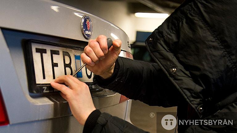 Registreringsskylt, regskylt, bil, stöld Foto: Leo Sellén/TT