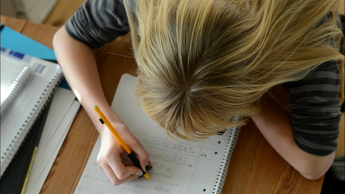 Tyttö kirjoittaa paperille. Foto: Fredrik Sandberg/TT