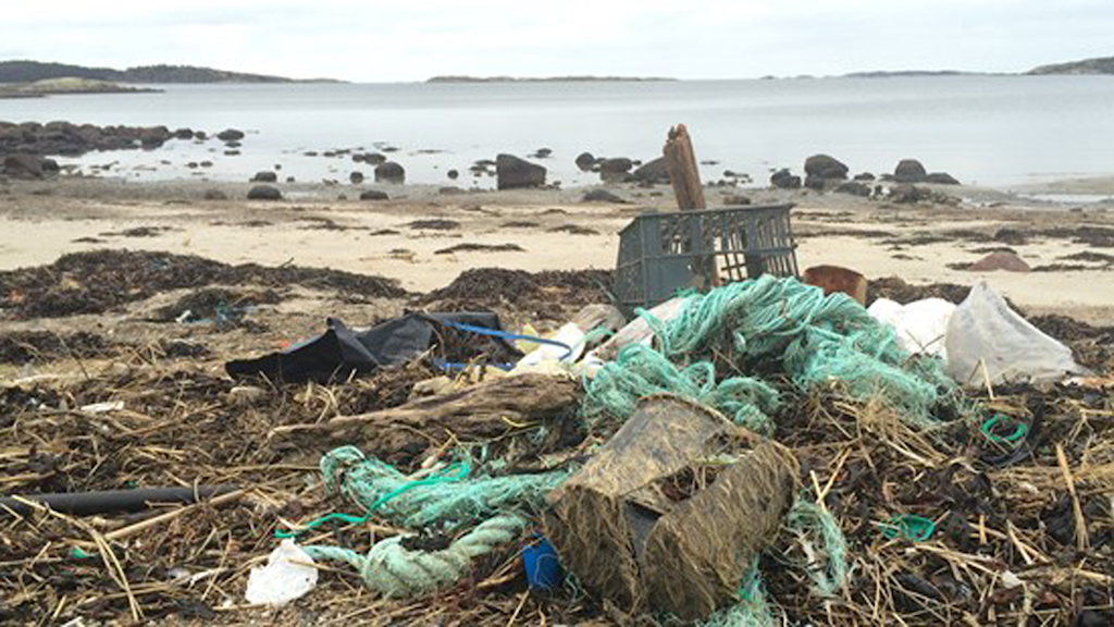 Bild på skräp på en strand utanför Strömstad.
