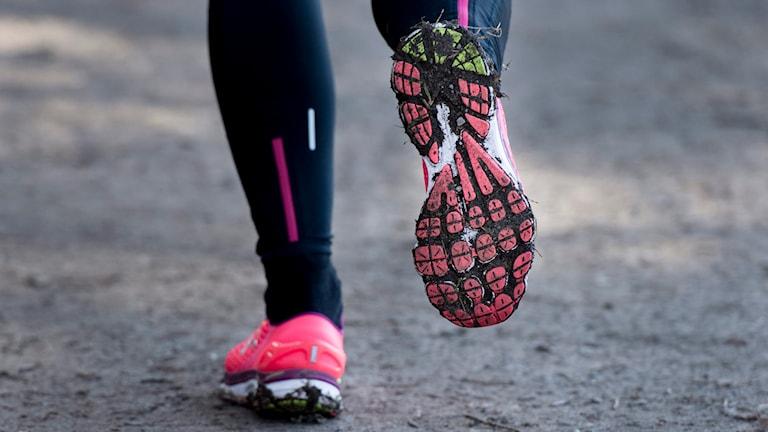 Bild på en persons ben, som springer uppför en backe. Personen har rosa löparskor på sig. Foto: Nora Lorek/TT