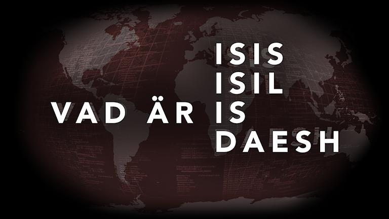 Många pratar om IS, men vilka är det? Bild: Aleksander Djordjevic/Sveriges Radio