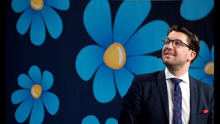 Демократы Швеции на подъеме - лидер партии Имми Окессон доволен последними рейтингами партии.