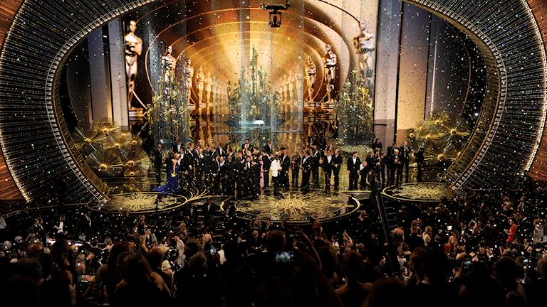 Oscarsgalan får hård kritik för brist på mångfald. Foto: Chris Pizzello/TT