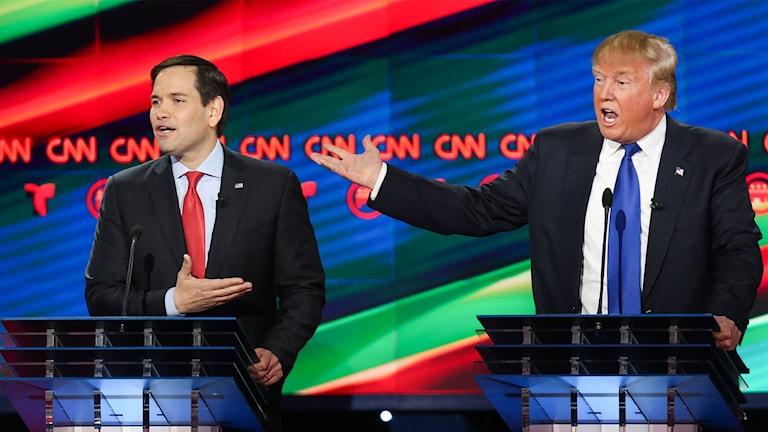 Donald Trump och Marco Rubio