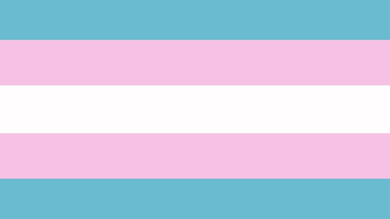 Transflaggan i ljusblått, ljusrosa och vitt.