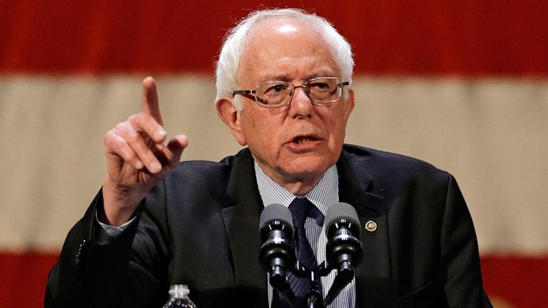 Bild på Bernie Sanders.