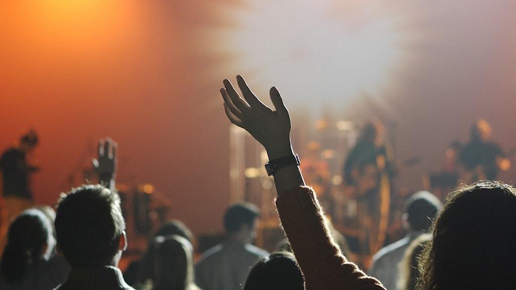 Bild på personer under en konsert