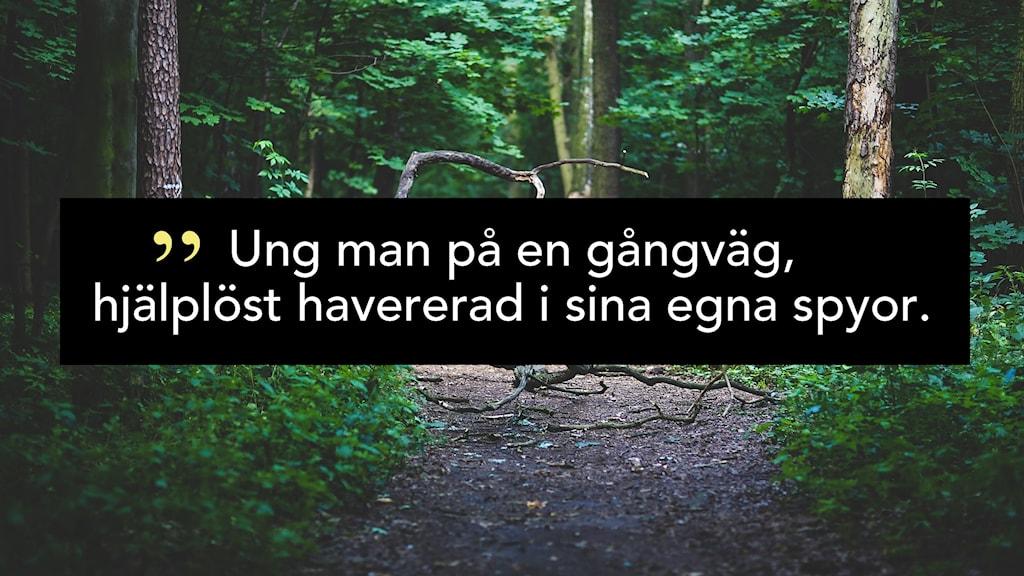 """Bild på en stig i en skog och svart ruta med texten """"Ung man på en gångväg, hjälplöst havererad i sina egna spyor""""."""