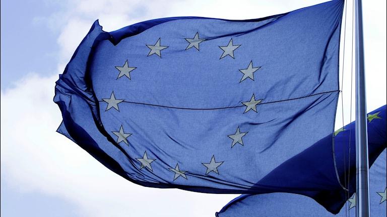 EU-flagga i vinden