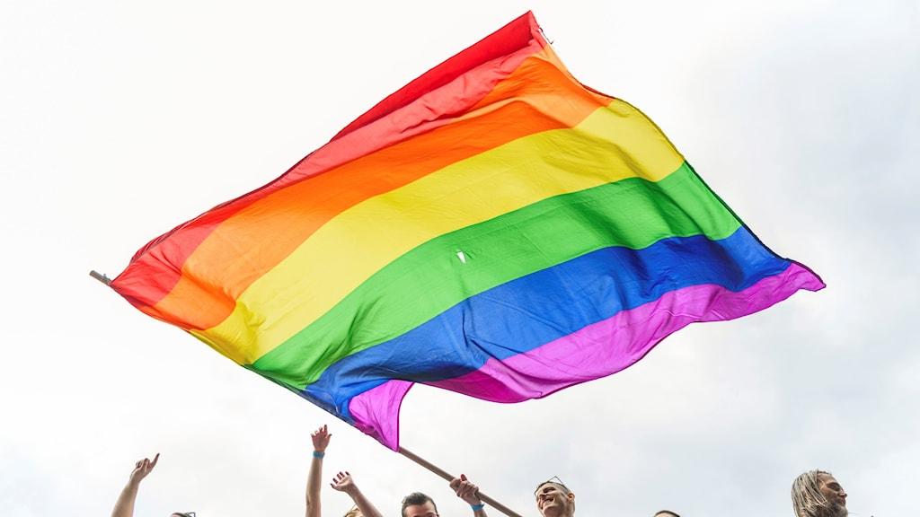 En regnbågsflagga