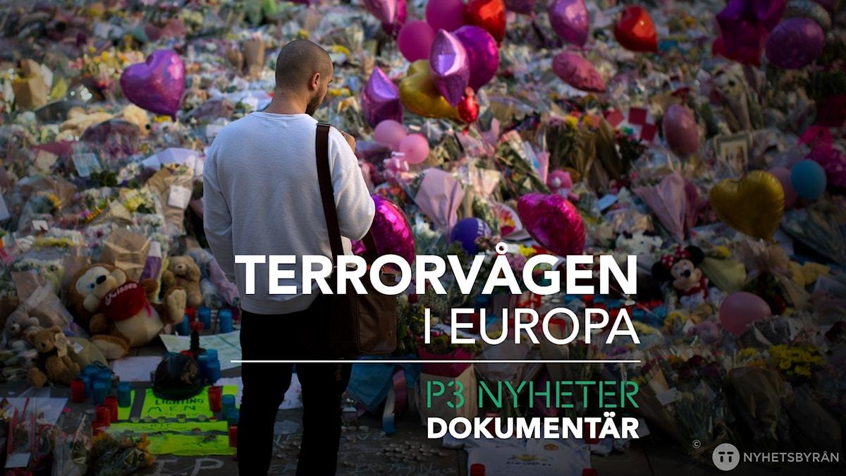 Terrorvågen i Europa - P3 Nyheter Dokumentär