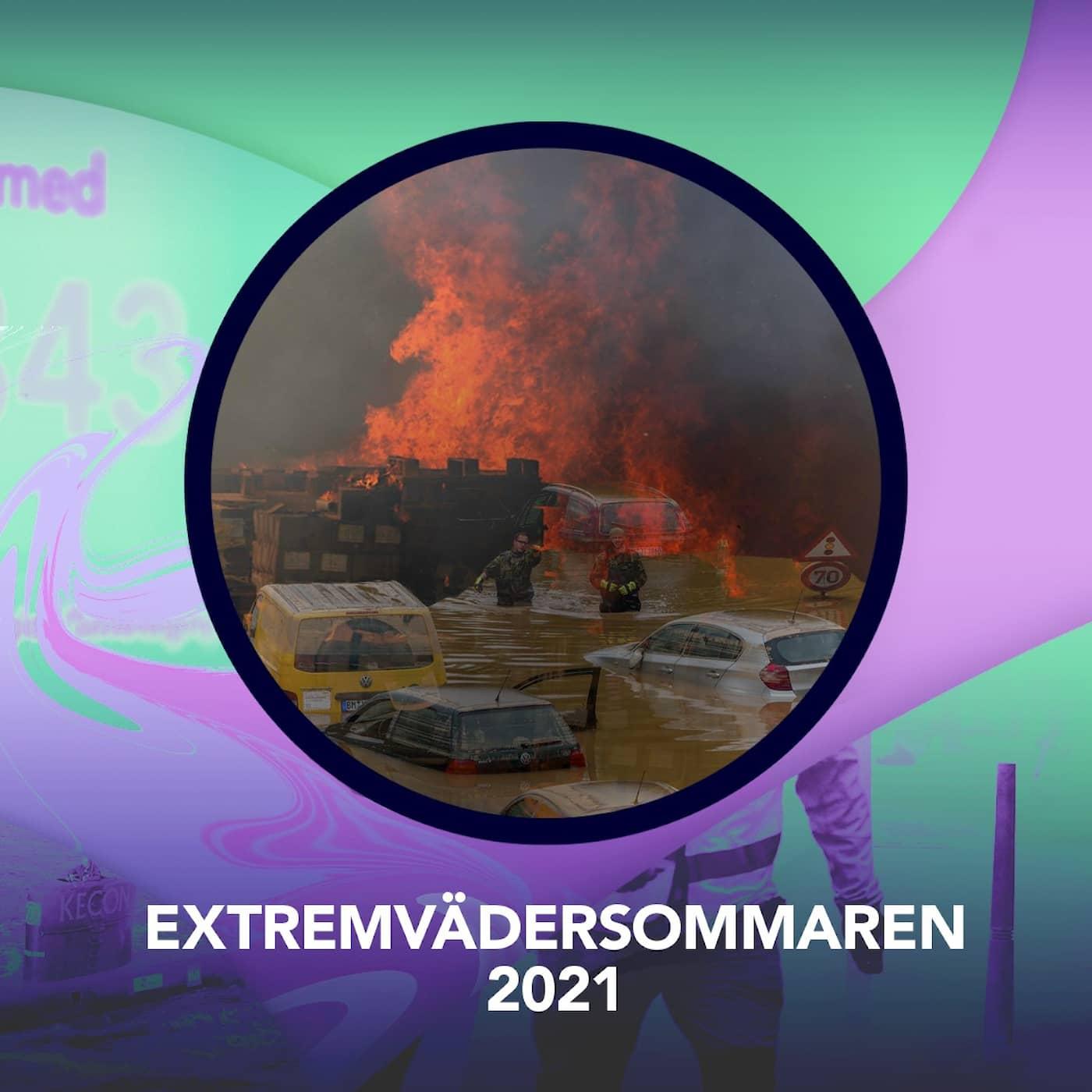 Extremvädersommaren 2021 – P3 Nyheter Dokumentär