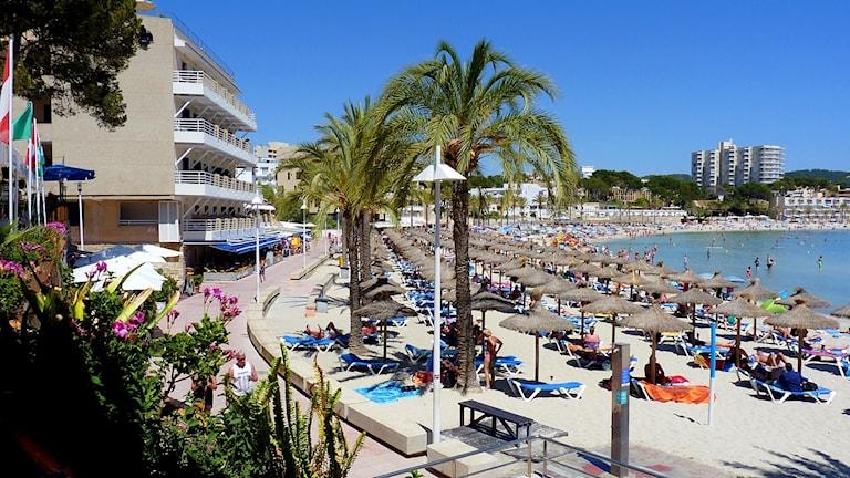 En fullbelagd sandstrand på Mallorca