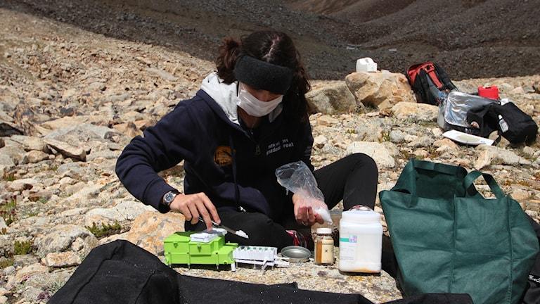 Teresa förbereder salterna för HABIT