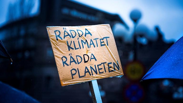 Klimatmanifestation i Stockholm.