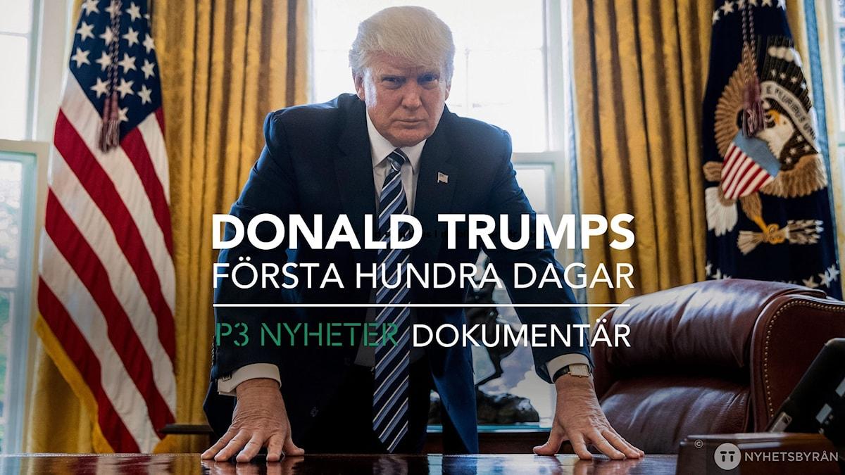 Bild på Donald Trump vid skrivbordet i Ovala rummet i Vita huset, med texten Donald Trumps första hundra dagar - P3 Nyheter Dokumentär. Bild: Julia Juhlin Karlsson