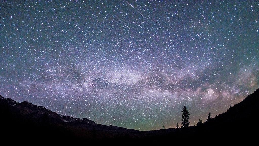 Stjärnor, rymden