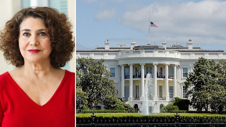 Elaine Kamarck, statsvetare, som sitter i det demokratiska partiets ledning och har jobbat med flera tidigare presidentvalskampanjer.