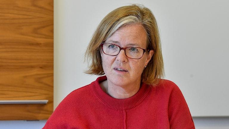 Carin Jämtin, generaldirektör på Sida.