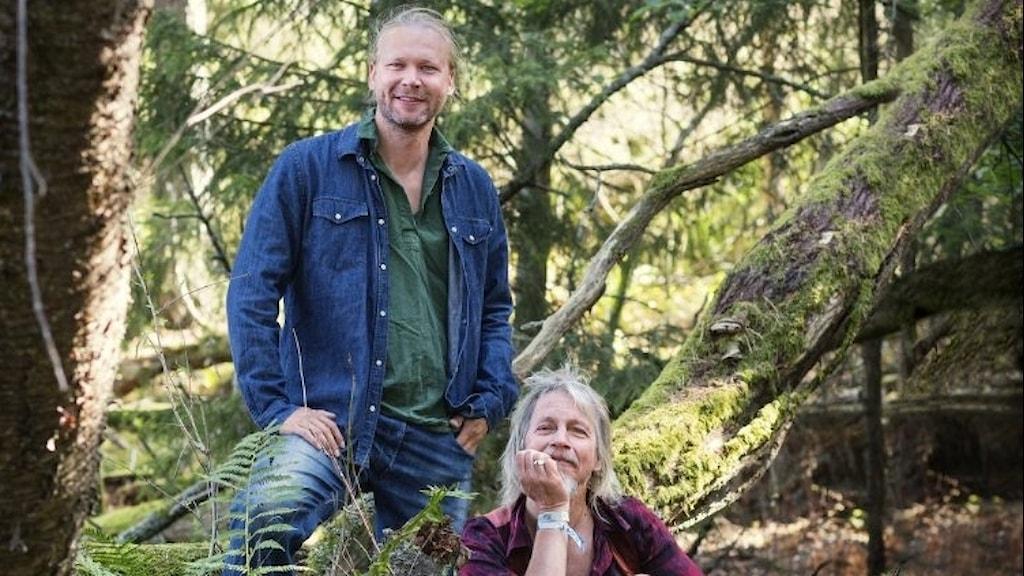 Martin Emtenäs och Stefan Sundström är ute i skogen.