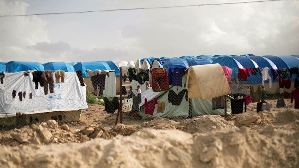 Vy utifrån flyktinglägret i Al-Hol.