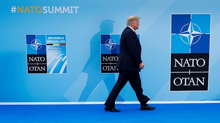 Donald Trump på Nato-möte