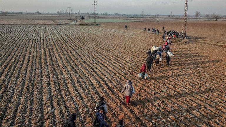 Migrants walk towards Greece along the Turkey-Greece border near Pazarkule