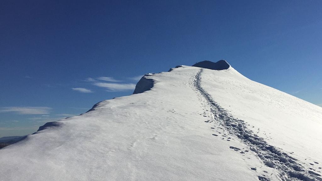 Kebnekaise sydtopp, fortfarande Sveriges högsta punkt. Foto: Nils Eklund/Sveriges Radio
