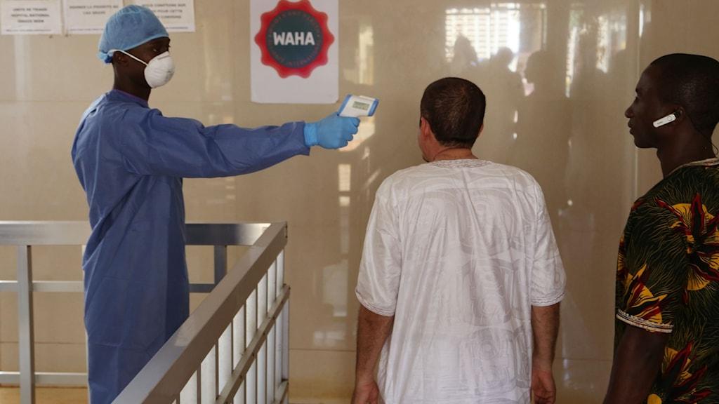 Ebola i Guinea.