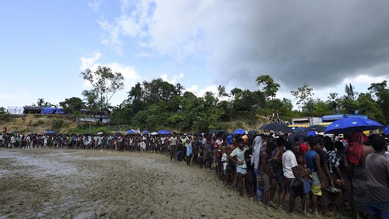 De senaste veckorna har en stor mängd flyktingar kommit till Bangladesh.