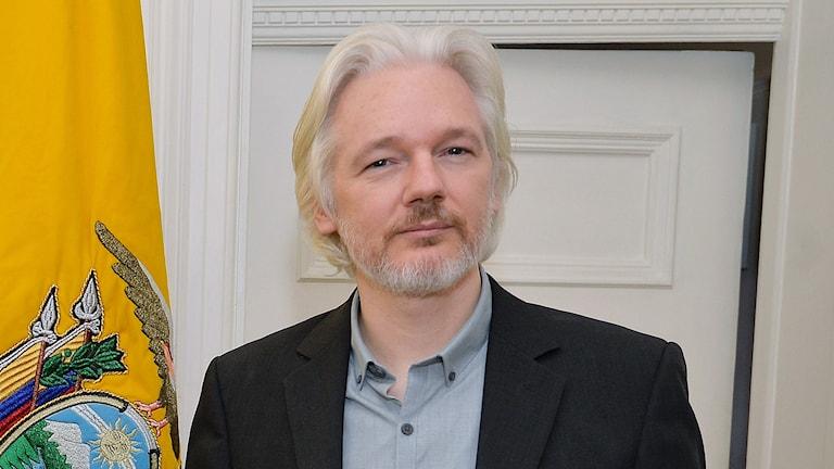 Julian Assange. Foto: John Stillwell/TT