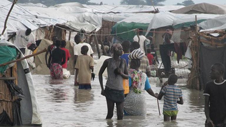 Över 45 000 flyktingar som lever under svåra förhållanden inne på FN-basen i Bentiu i norra Sydsudan är helt beroende av internationella organsiationer. Foto: Richard Myrenberg/Sveriges Radio