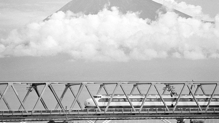 I Japan går tågen på tid. Foto: TT.