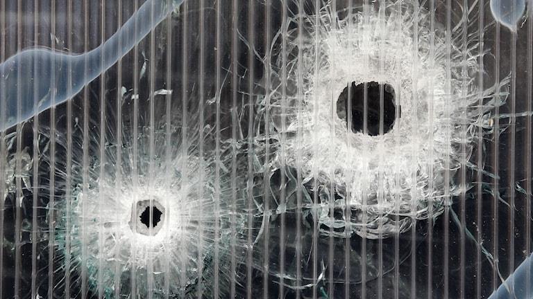 Skotthål i fönstret efter skjutningen i Köpenhamn. Foto: TT
