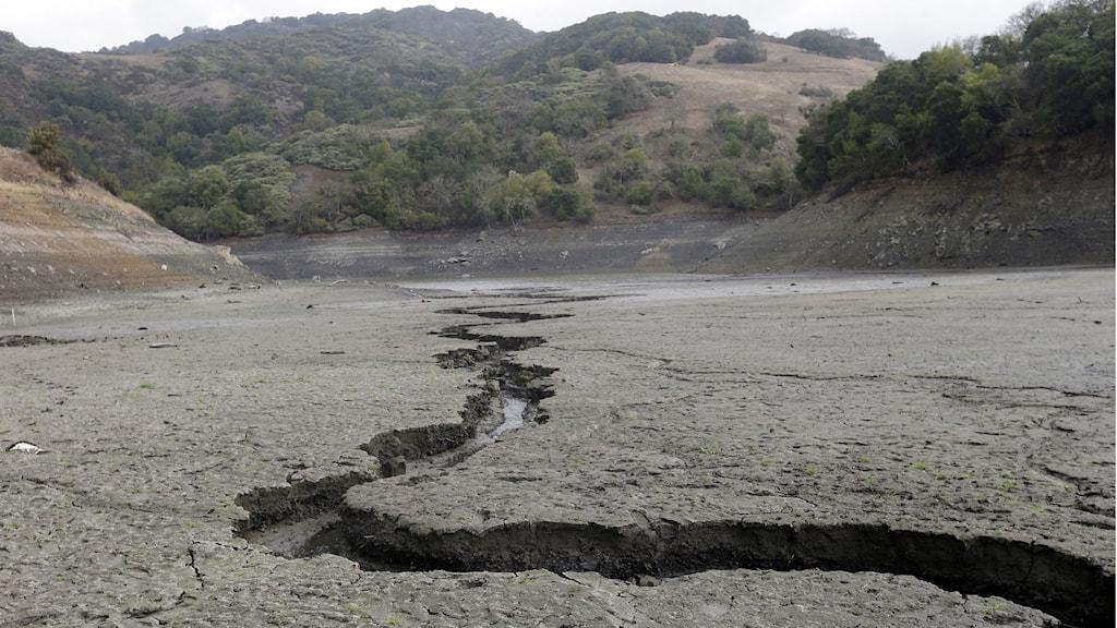 San José, Kalifornien. Marken spricker till följd av torkan. Foto: TT