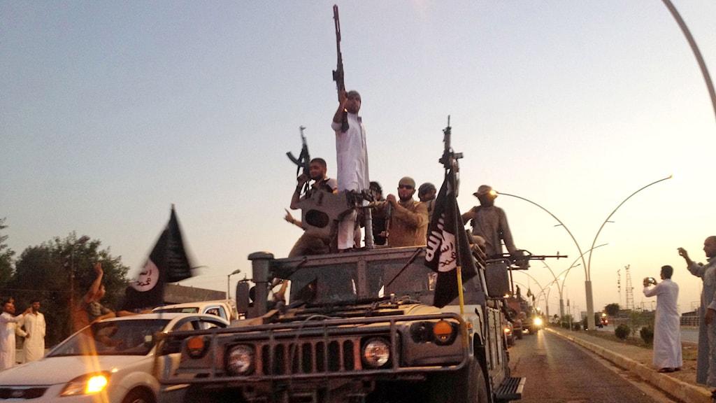 Krigare från Islamiska Staten paraderar i Irak. Foto: TT