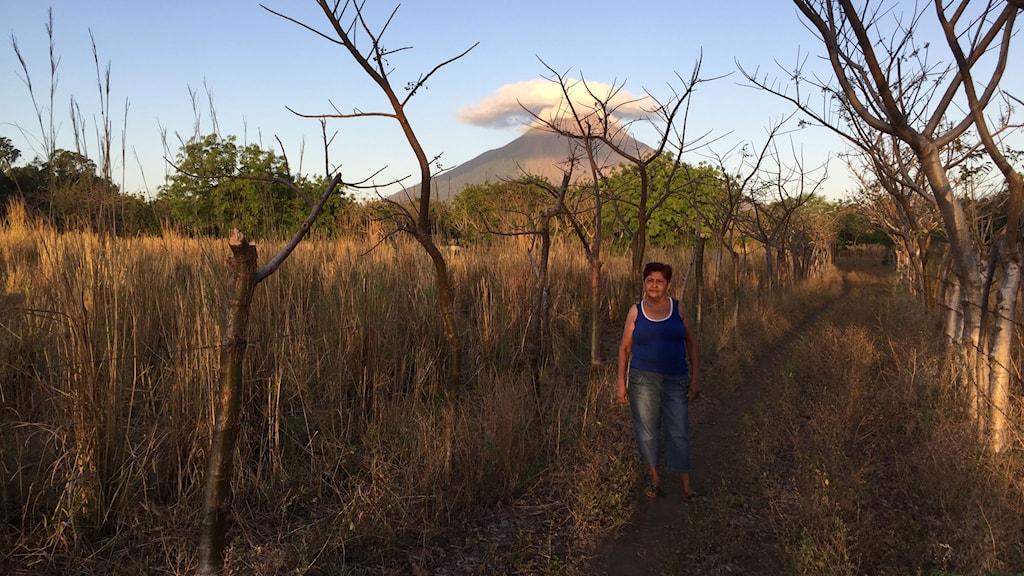 Doña Mercedes Alfaro odlar bananer på vulkanön Ometepe. HKND vill bygga arbetsbostäder för de kinesiska arbetarna på hennes mark. Foto: Lotten Collin/Sveriges Radio.