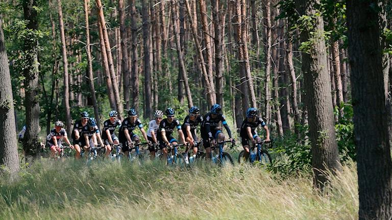 Träning inför Tour de France i Holland. Foto: TT