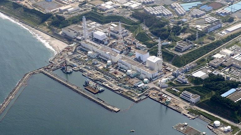Fukushima kärnkraftverk. Foto: AP / TT