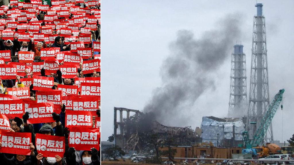 Protesterar mot återöppnandet av kärnkraftverket och Fukushima 3 efter tsunamin 2011. Foto: AP / TT