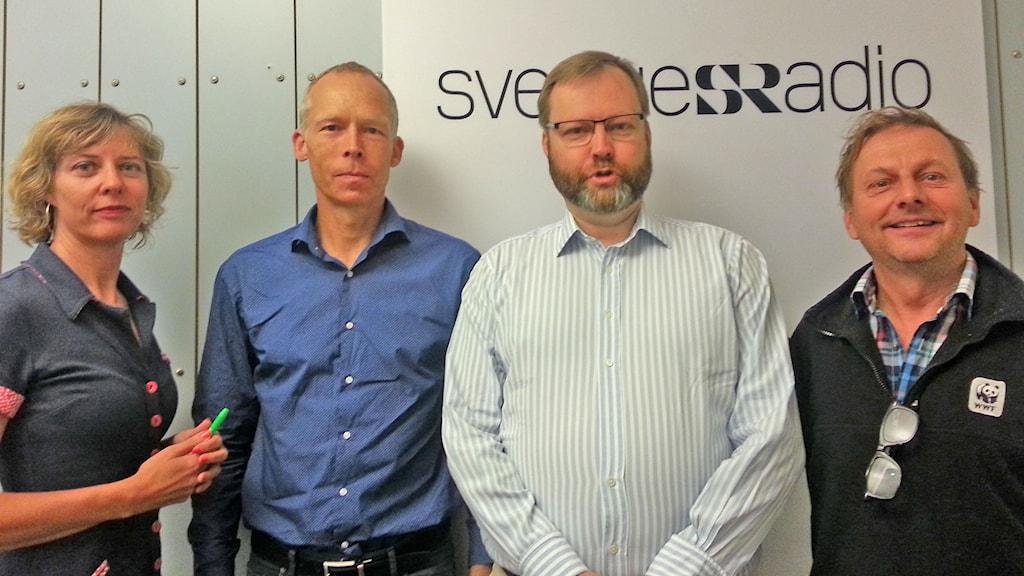 Katherine Zimmerman, Johan Rockström, Niklas Granholm och Tom Arnbom. Foto: Ensi Ukkola/Sveriges Radio