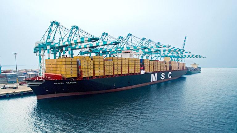 MSC Maya, världens största fraktfartyg.