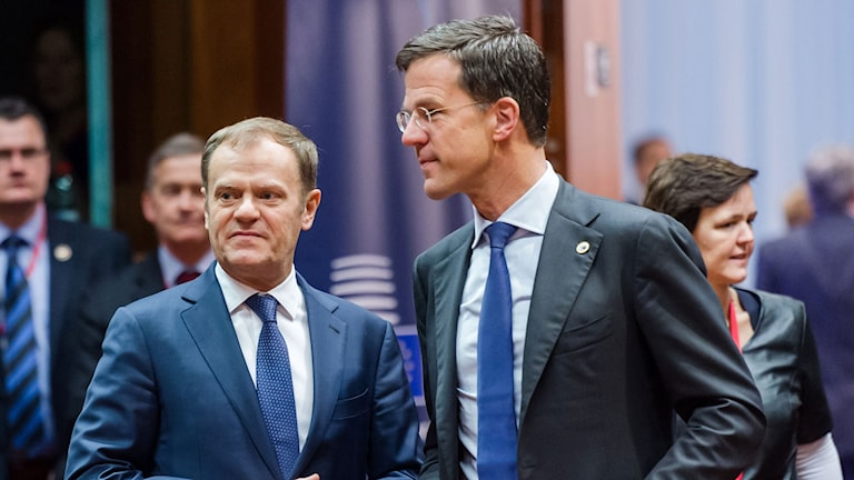 EU:s permanente ordförande Donald Tusk talar med Nederländernas premiärminister Mark Rutte vid det senaste EU-toppmötet i Bryssel. Nederländerna tar över ordförandeskapet i EU vid årsskiftet. Foto: Geert Vanden Wijngaert/AP/TT